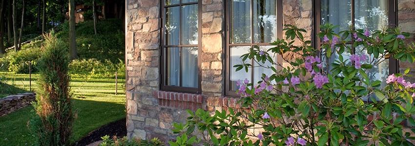 08-plant-flowers.jpg