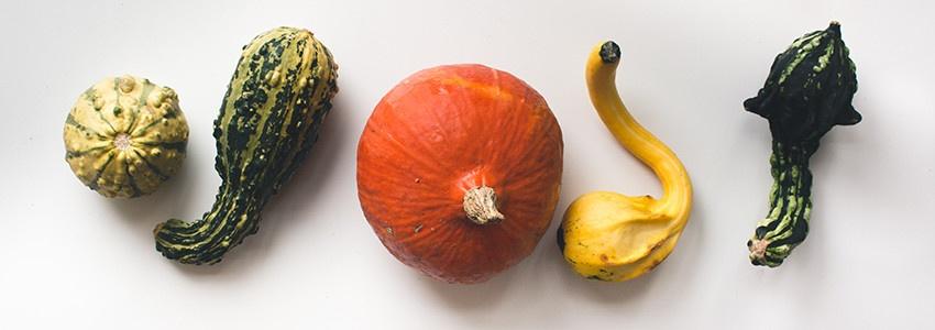 creative-gourds.jpg